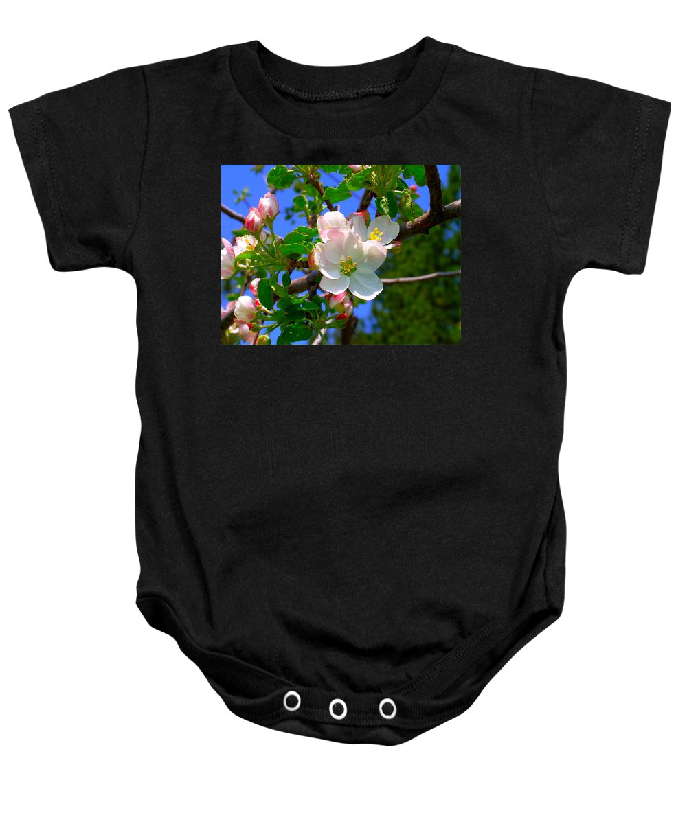 Apple Baby Onesie featuring the photograph Apple Blossoms by Karon Melillo DeVega