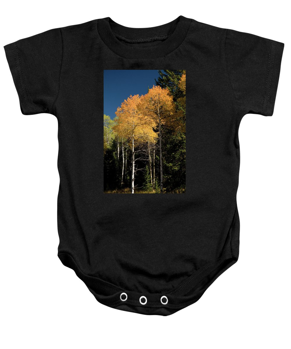 Grand Teton Baby Onesie featuring the photograph Aspens And Sky by Steve Stuller