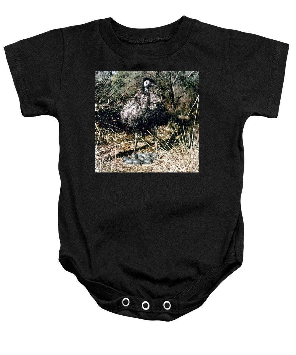 Australian Baby Onesie featuring the photograph Australian Emu by Granger