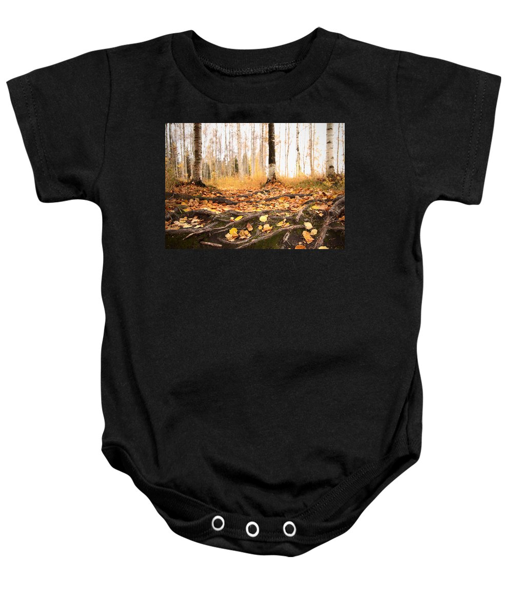 Yellow Leaves Baby Onesie featuring the photograph Autumn In Finland by Sandra Rugina