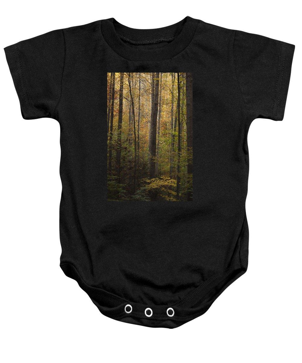 Autumn Baby Onesie featuring the photograph Autumn In The Woods by Andrew Soundarajan