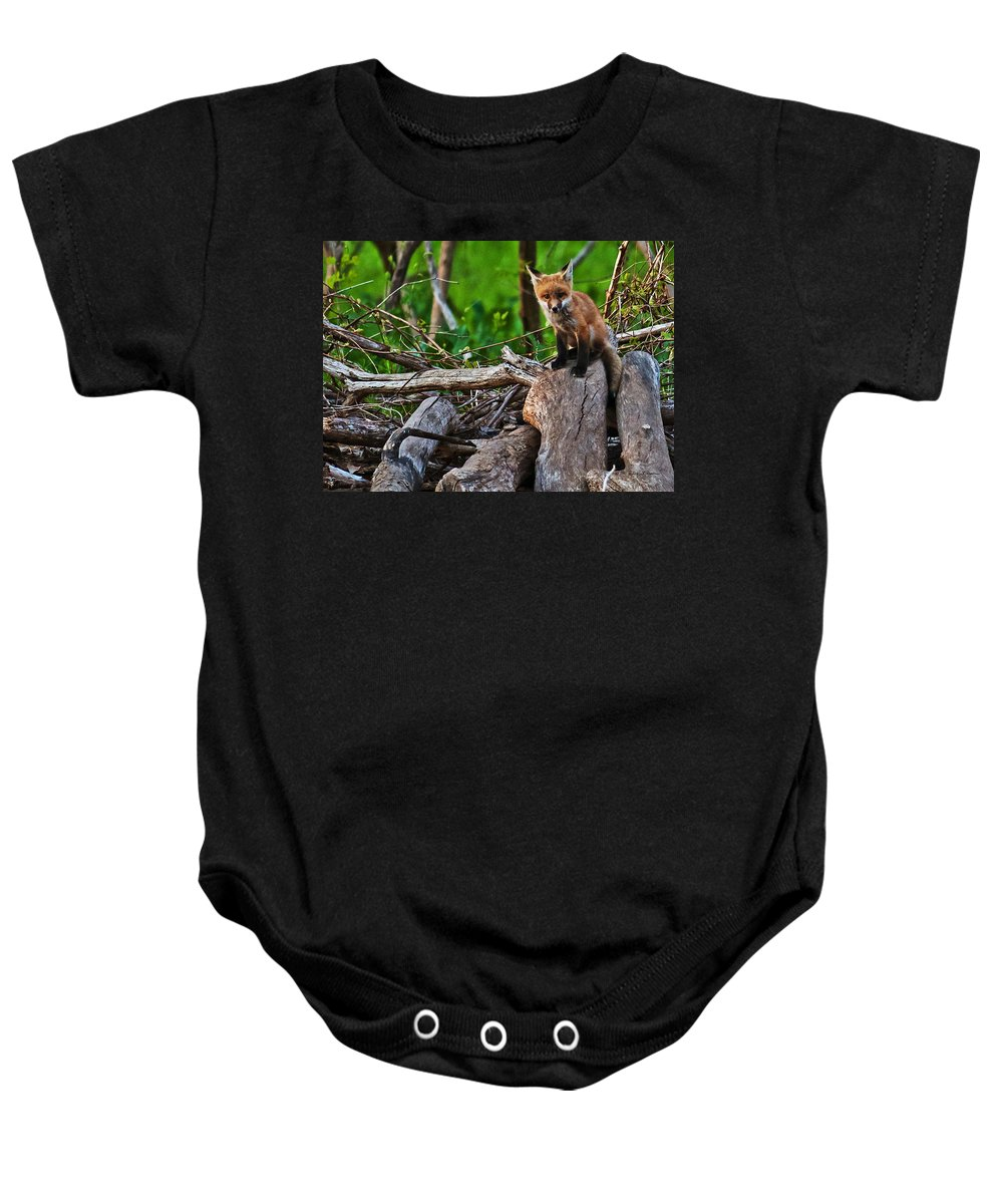 Heron Haven Baby Onesie featuring the photograph Baby Fox by Edward Peterson