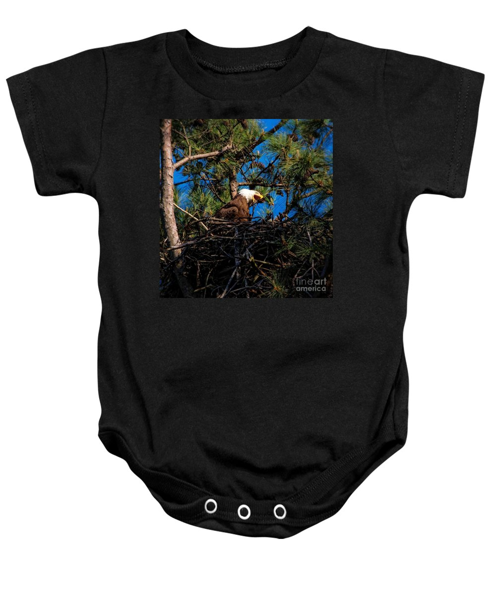 Bald Eagle In Nest Baby Onesie featuring the photograph Bald Eagle In The Nest by Warrena J Barnerd