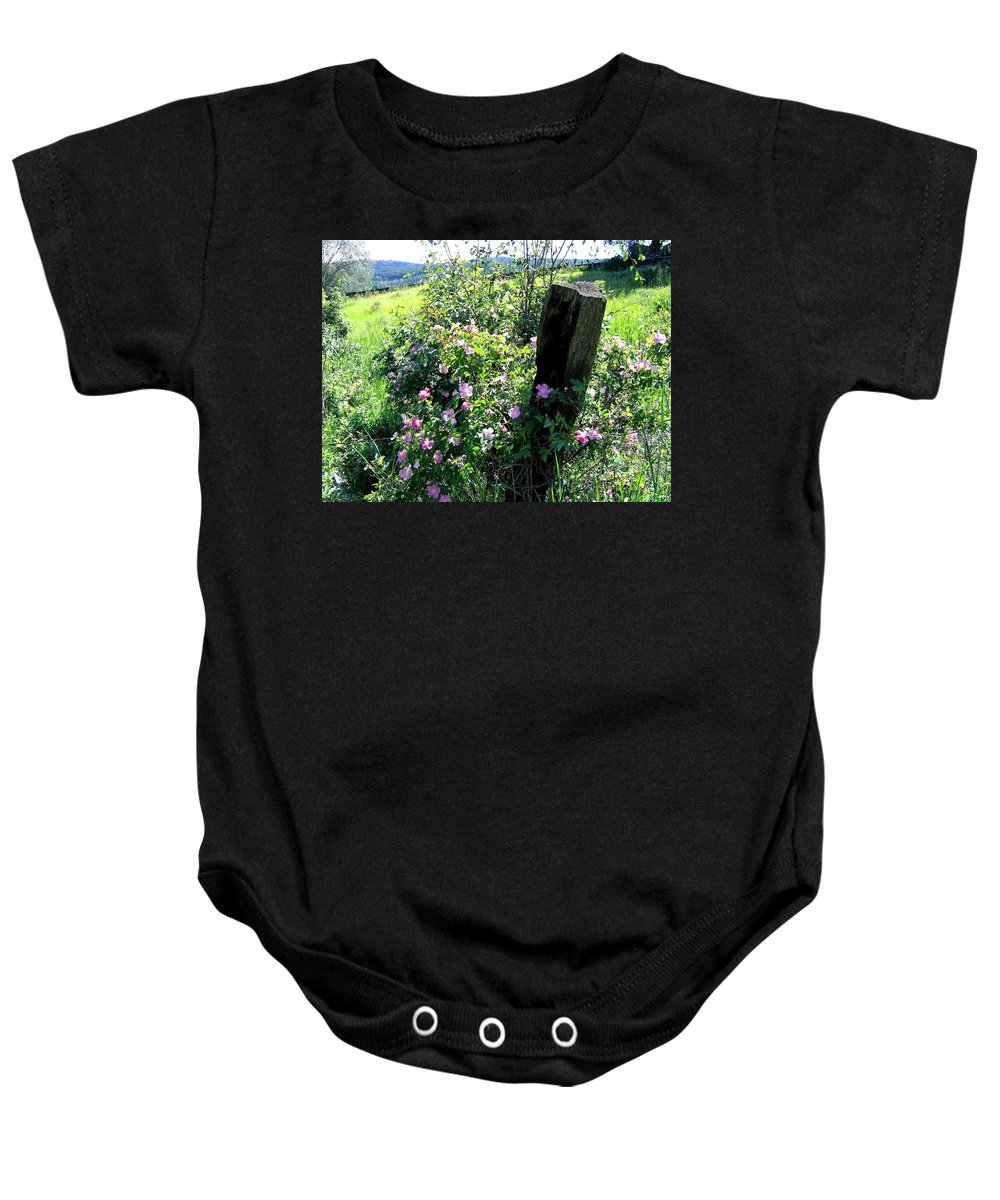 Wild Roses Baby Onesie featuring the photograph Barbed Wire And Roses by Will Borden