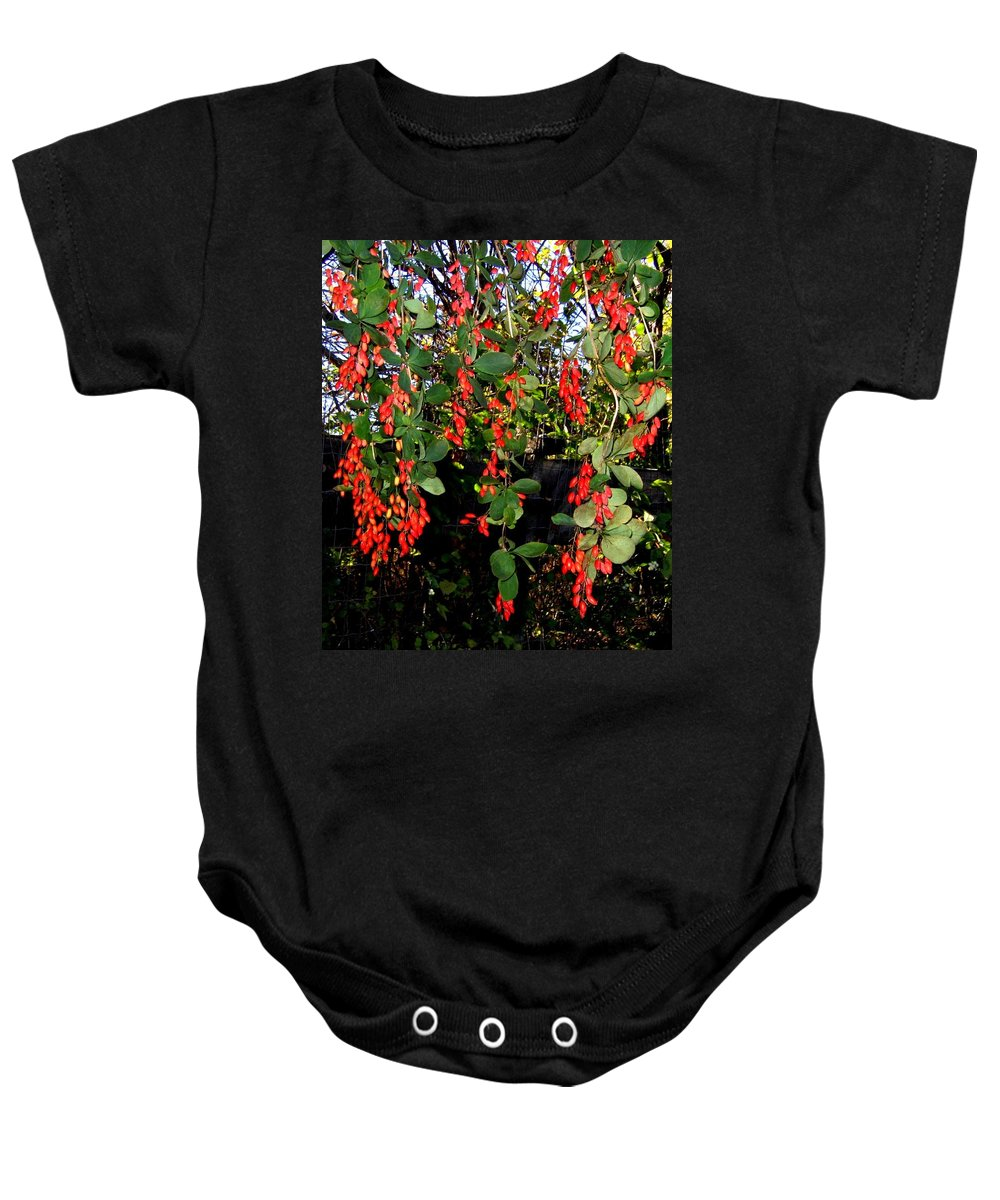 Barberries Baby Onesie featuring the photograph Barberries by Will Borden