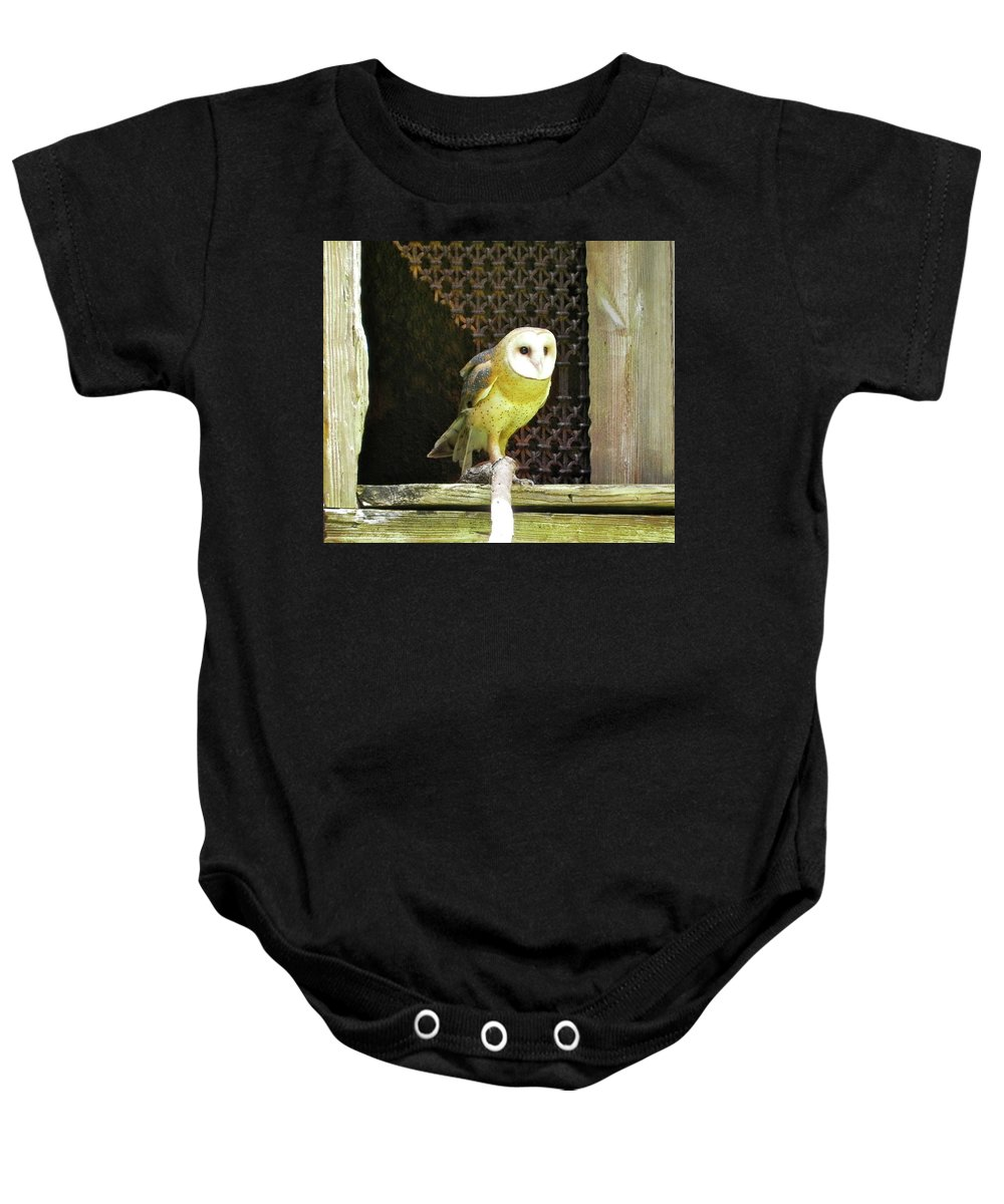 Bird Baby Onesie featuring the photograph Barn Owl On The Prowl by Maureen Beaudet