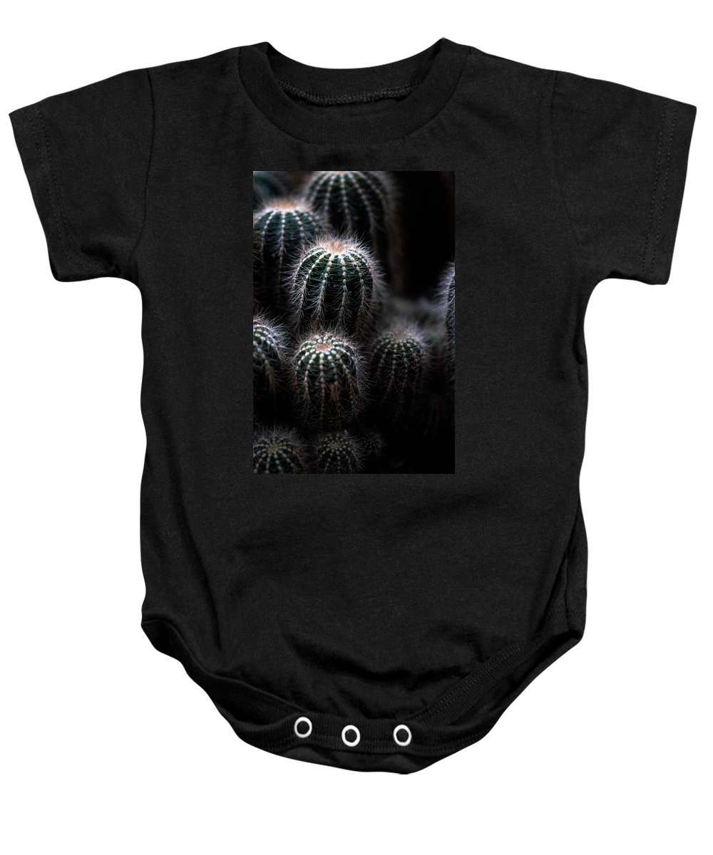 Brrel Cacus Baby Onesie featuring the photograph Barrel Cactus by Laurie Paci