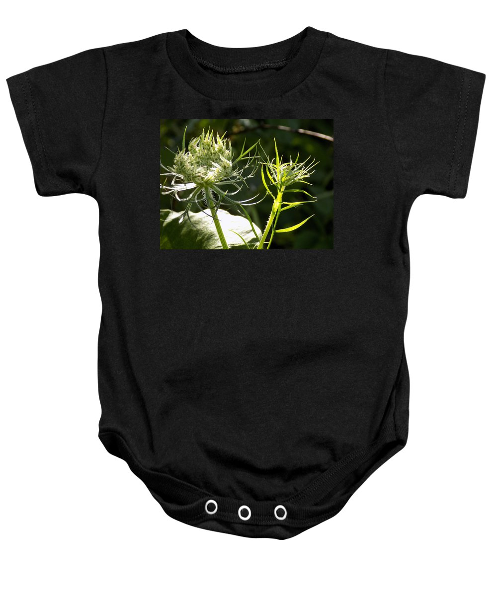 Sunshine Baby Onesie featuring the photograph Basking In The Morning Sun by William Tasker
