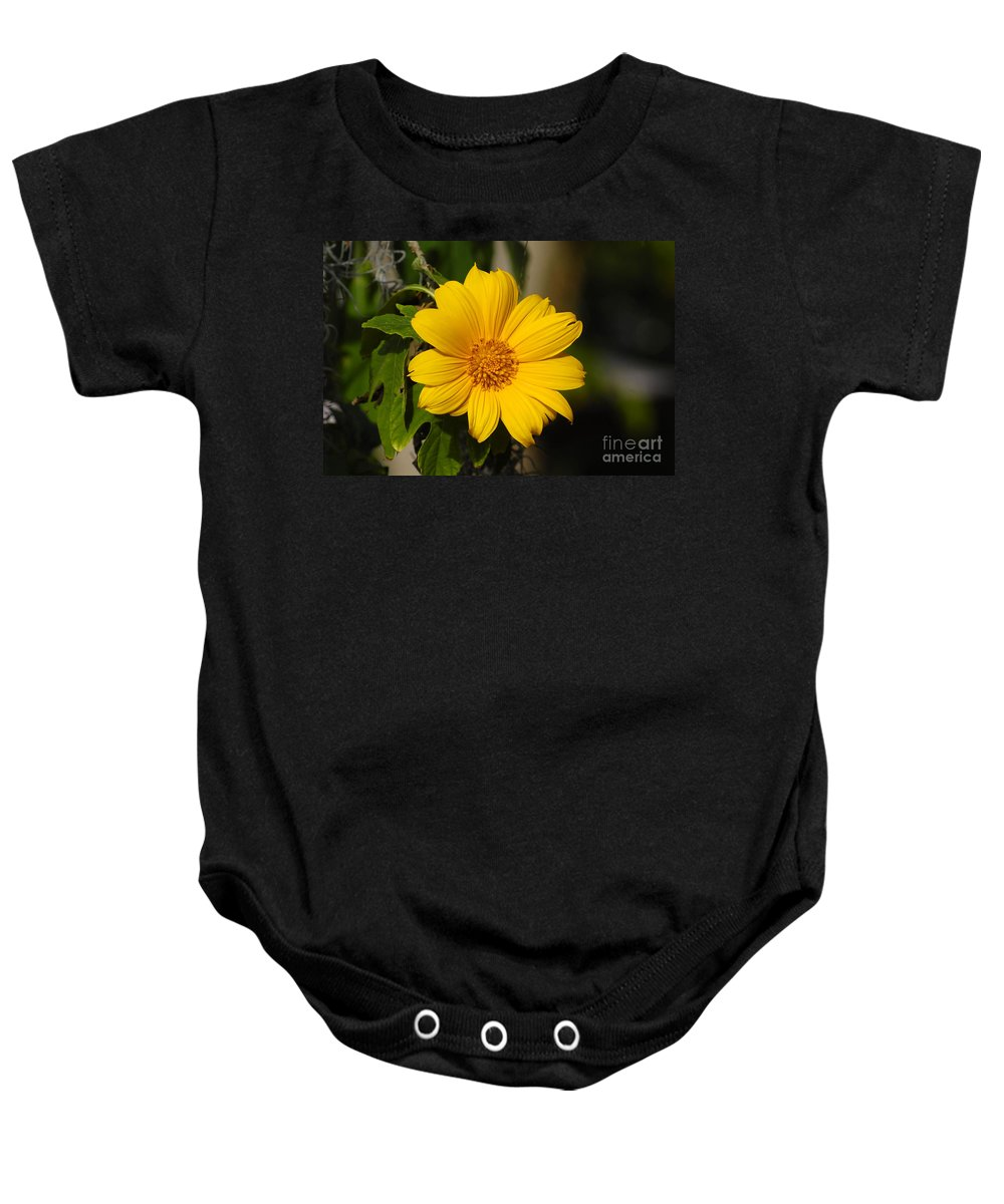 Yellow Baby Onesie featuring the photograph Beautiful In Yellow by David Lee Thompson