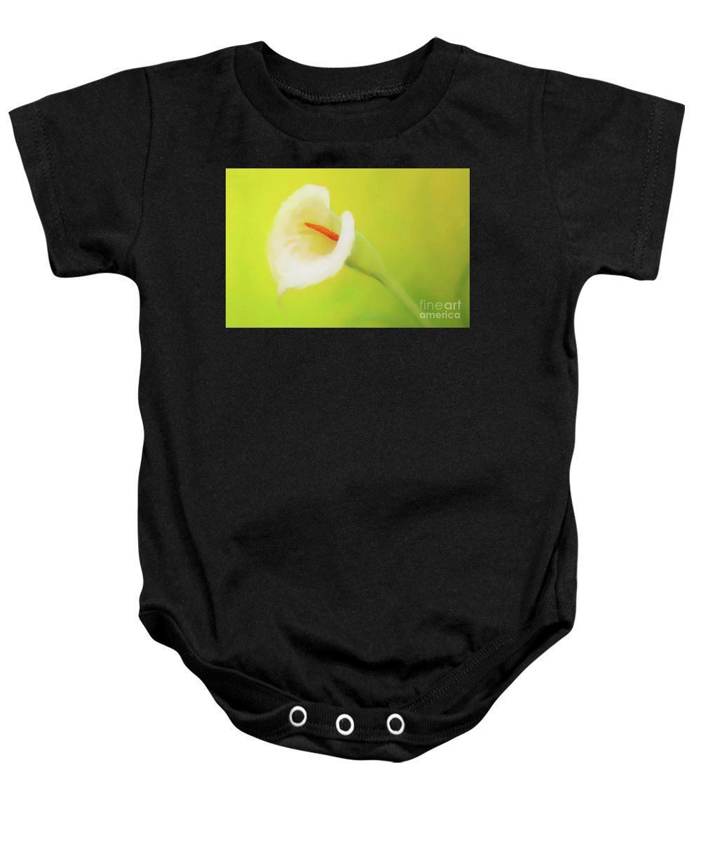 Flower Baby Onesie featuring the painting Beautiful Radiant Cala Flower On Decorative Background, Graphic From Painting. by Jozef Klopacka
