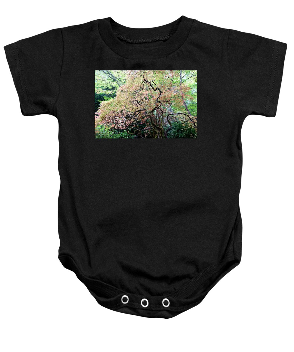 Outdoor Baby Onesie featuring the photograph Beautiful Japanese Garden,butchart Gardens,victoria,canada 3. by Andrew Kim