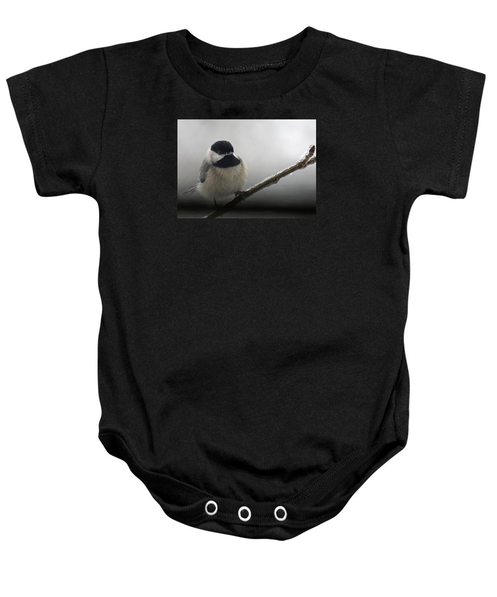 Chickadee Baby Onesie featuring the photograph Beauty And Ice by Karen Beasley