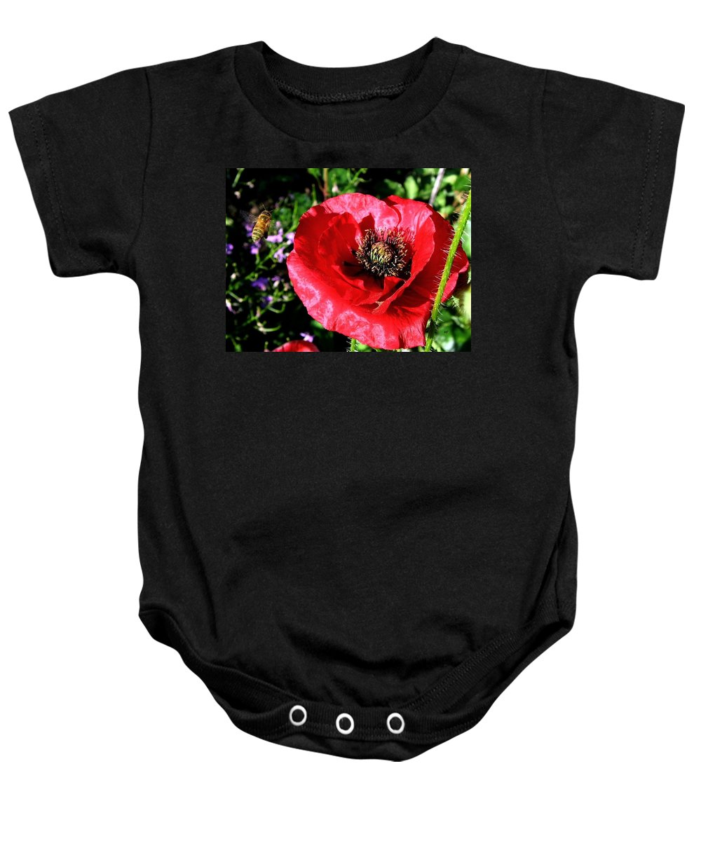 Bee Baby Onesie featuring the photograph Bee And Red Poppy by Will Borden