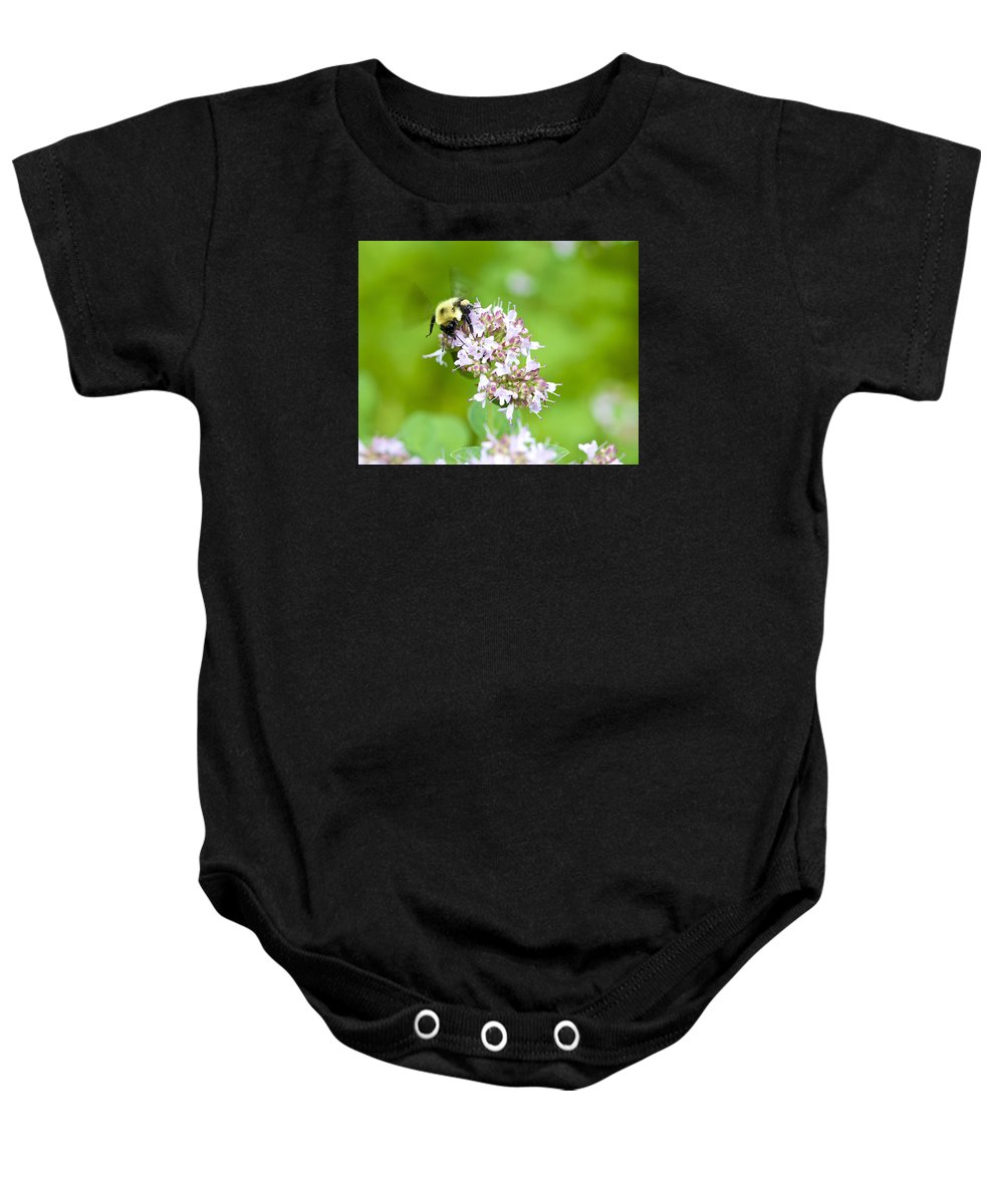 Bee Baby Onesie featuring the photograph Bee Wings by Robert Skuja