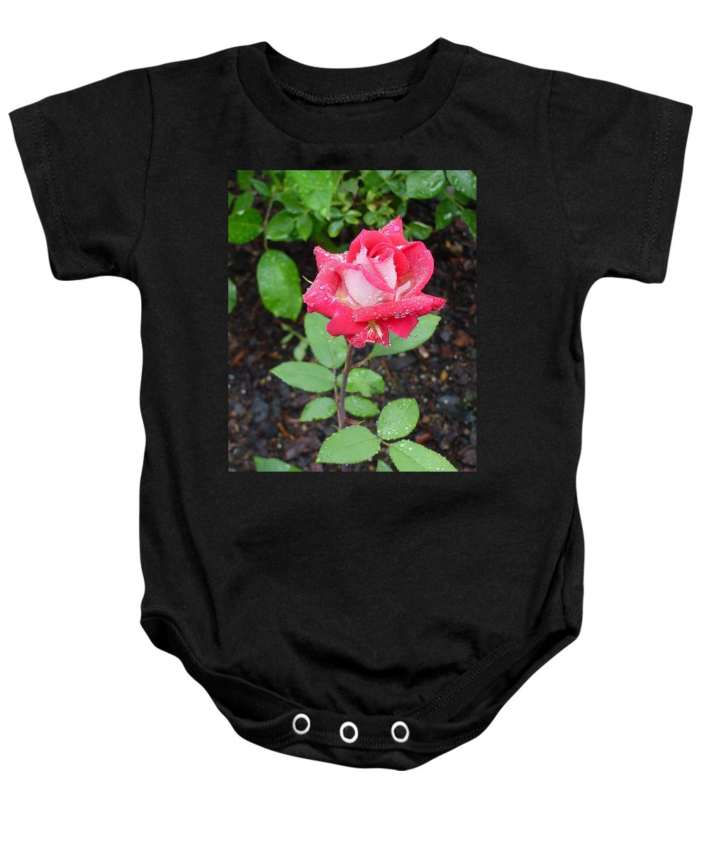 Rose Baby Onesie featuring the photograph Bi-colored Rose In Rain by Shirley Heyn