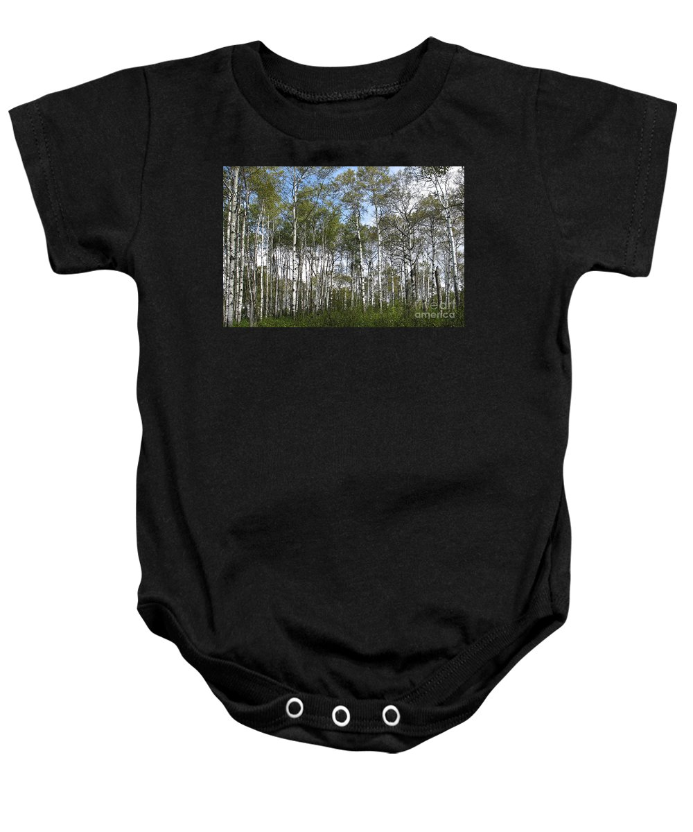 Forest Baby Onesie featuring the photograph Birch Forest by Teresa Zieba