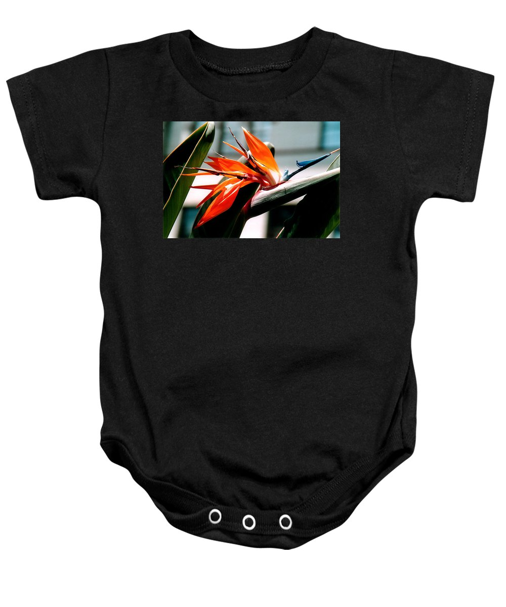 Flowers Baby Onesie featuring the photograph Bird Of Paradise 2 by Susanne Van Hulst