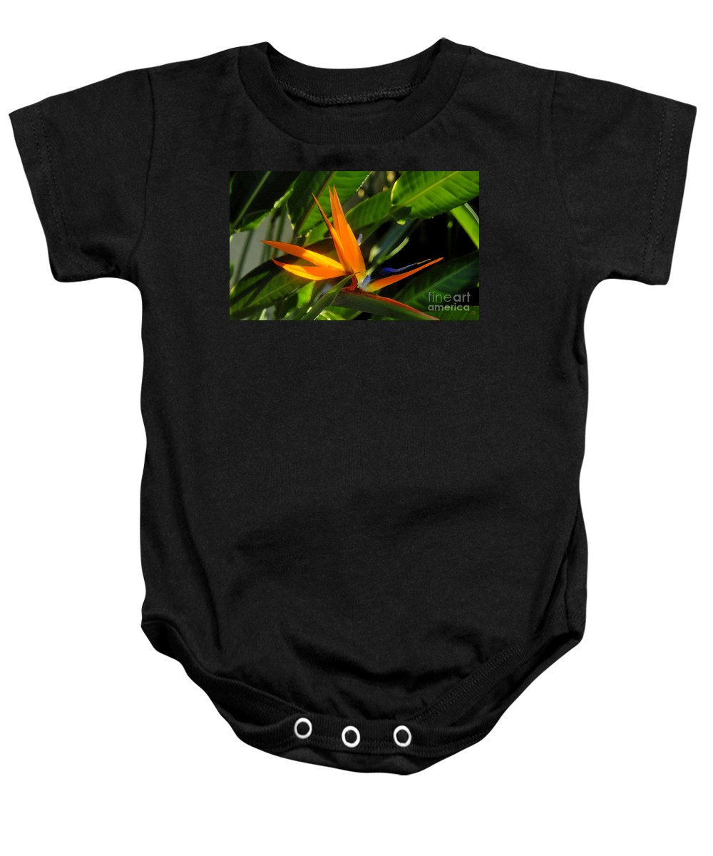 Bird Of Paradise Baby Onesie featuring the painting Bird Of Paradise by David Lee Thompson