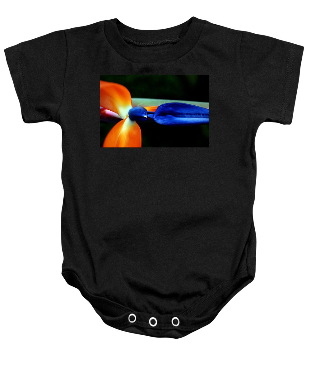 Flower Baby Onesie featuring the photograph Bird Of Paradise Study 1 by Jennifer Bright