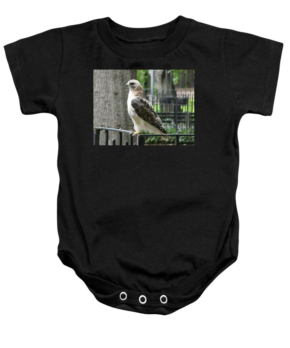 Bird Of Prey Baby Onesie featuring the photograph Bird Of Prey by Valerie Ornstein