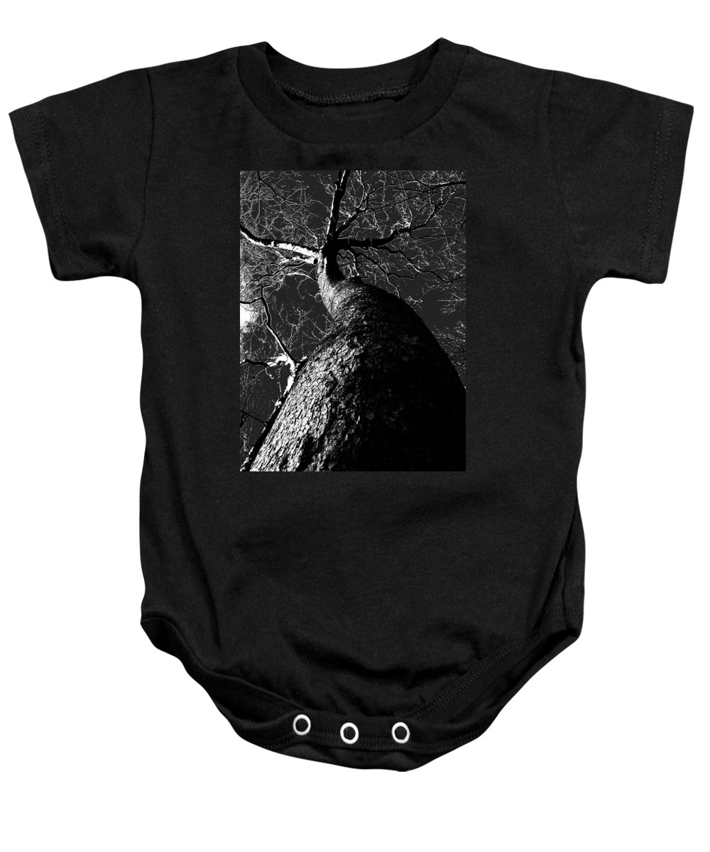 Black Beauty Baby Onesie featuring the photograph Black Beauty by Ed Smith