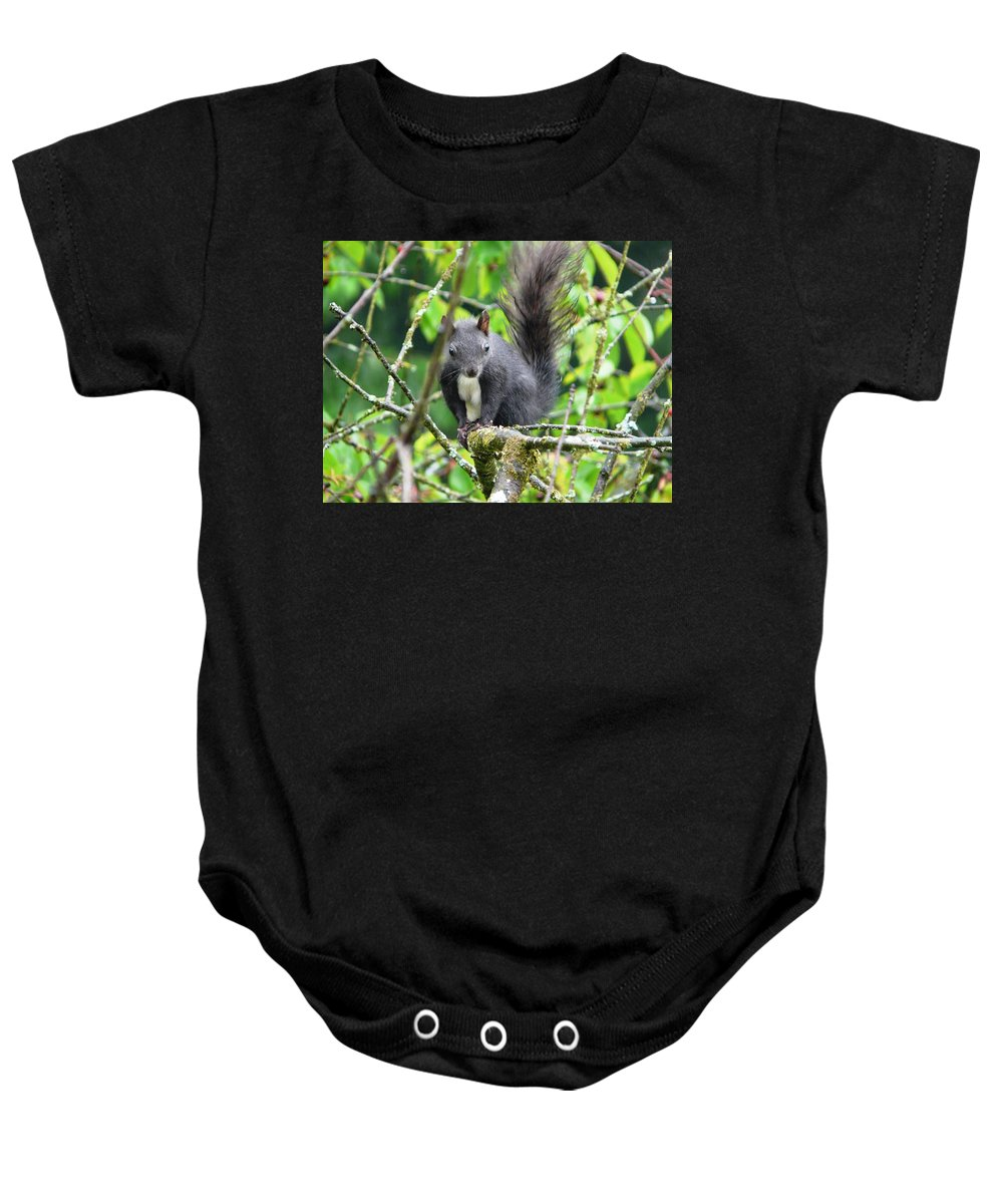 Animal Baby Onesie featuring the photograph Black Squirrel In The Cherry Tree by Valerie Ornstein
