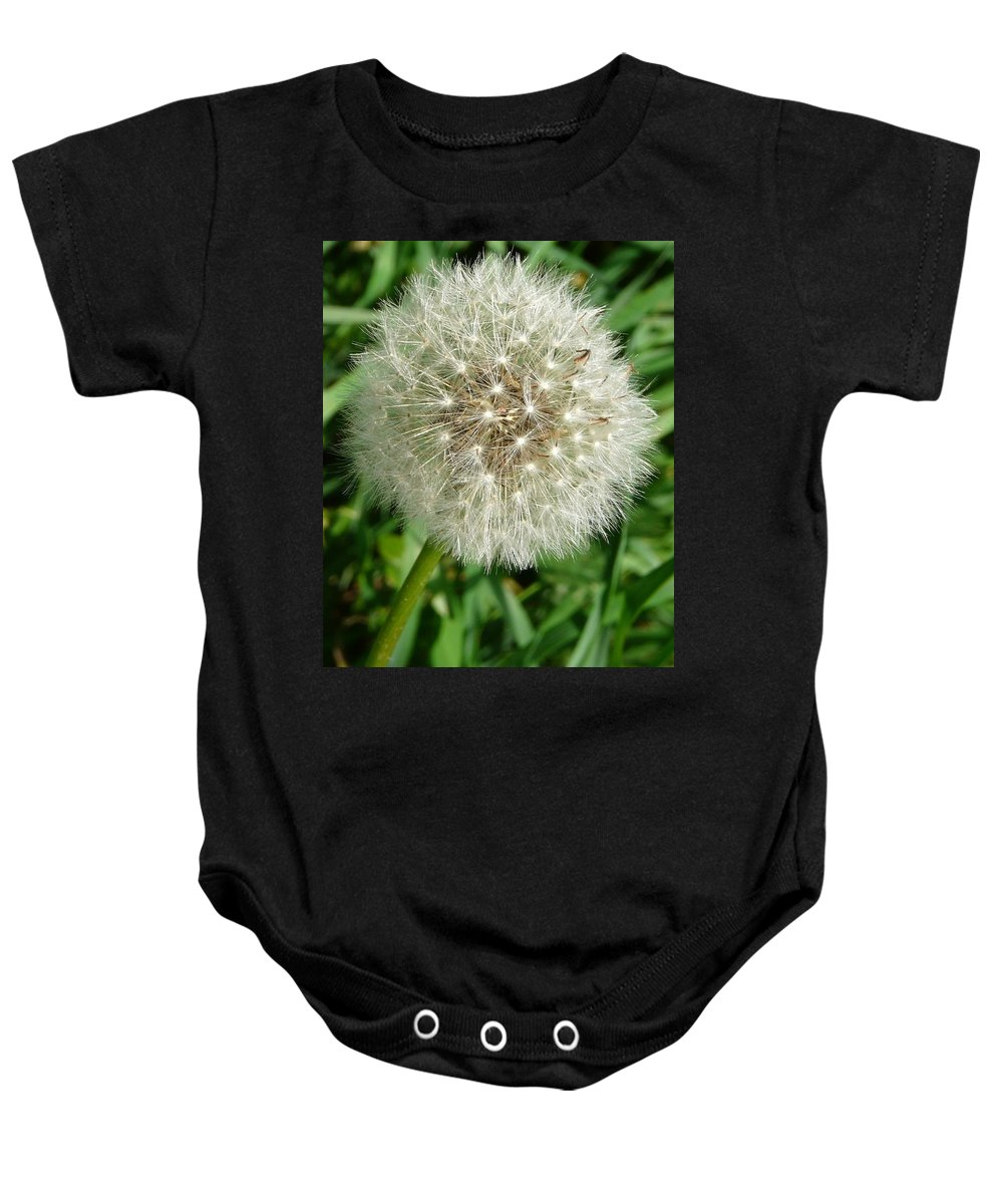 Blowball Baby Onesie featuring the photograph Blowball 1 by Valerie Ornstein