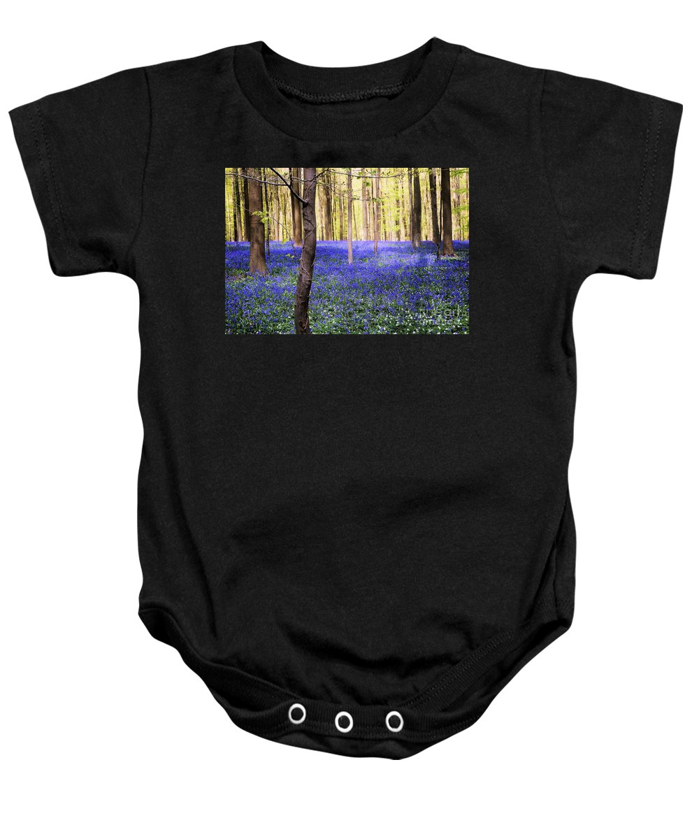 Blue Forest Baby Onesie featuring the photograph Blue Forest In Shadow by Andrea Rea
