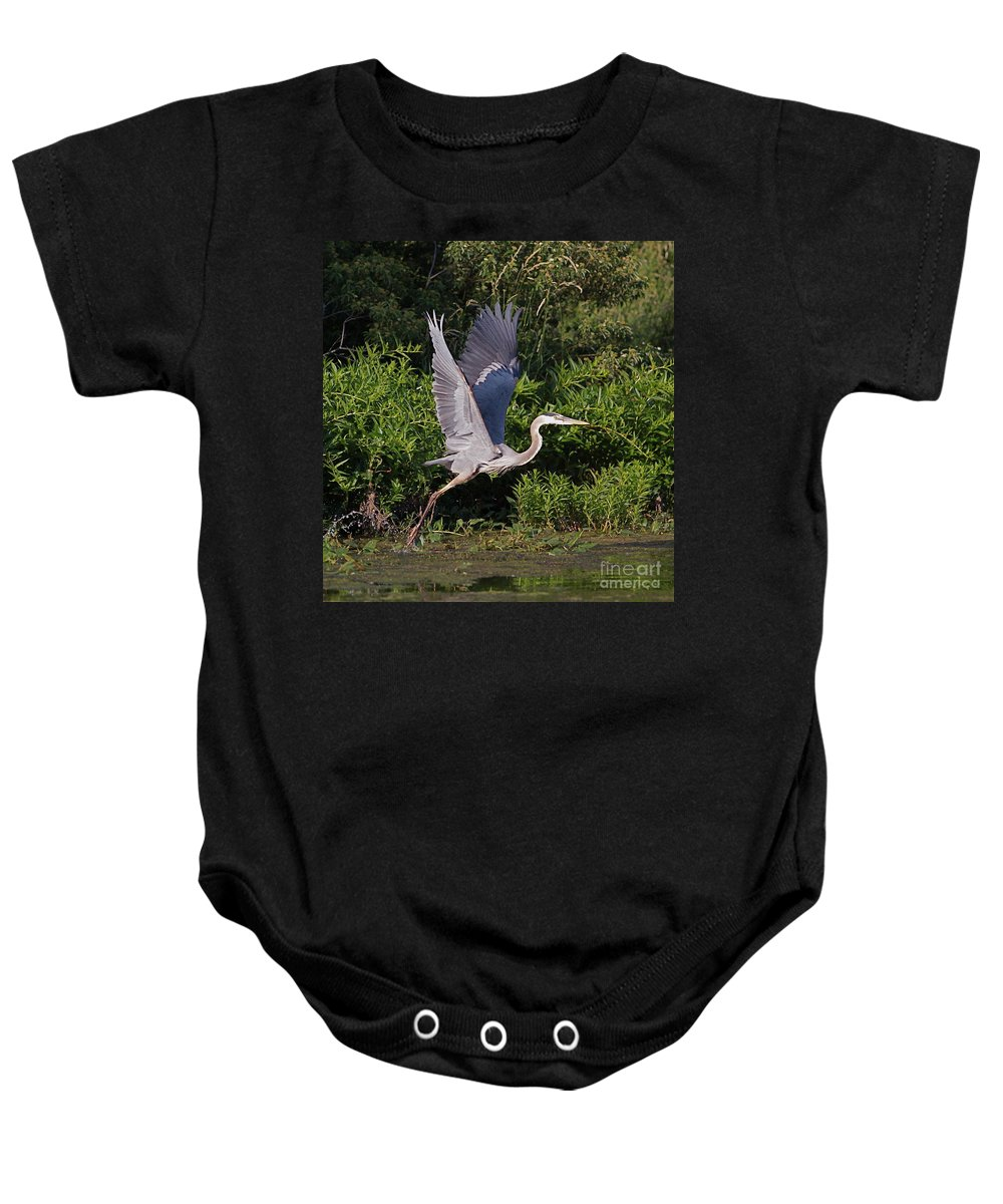 Bird Of Prey Bird Baby Onesie featuring the photograph Blue Heron by Robert Pearson