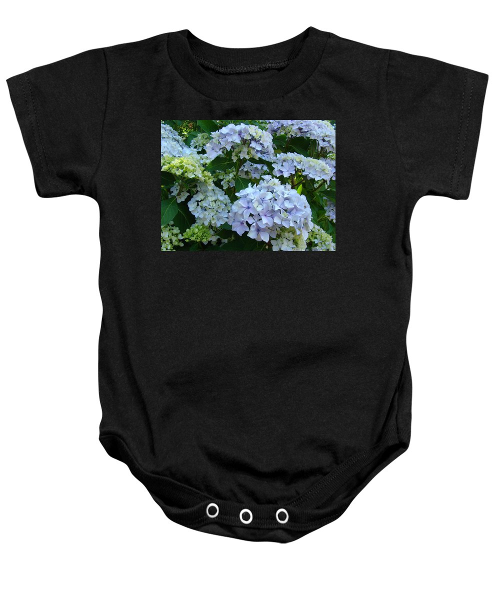 Hydrangea Baby Onesie featuring the photograph Blue Hydrangeas Art Prints Hydrangea Flowers Giclee Baslee Troutman by Baslee Troutman