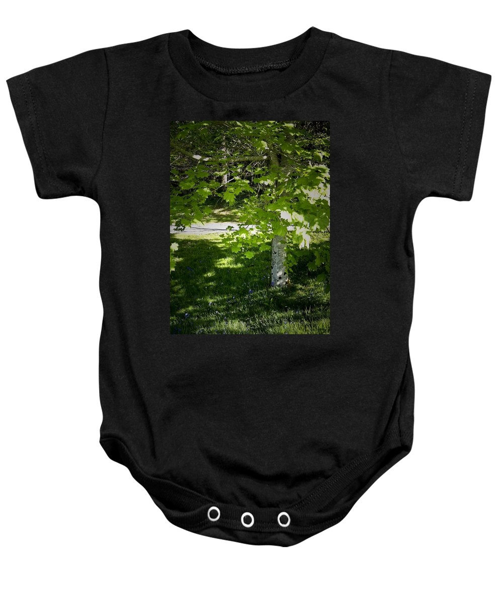 Irish Baby Onesie featuring the photograph Bluebells In Killarney National Park Ireland by Teresa Mucha