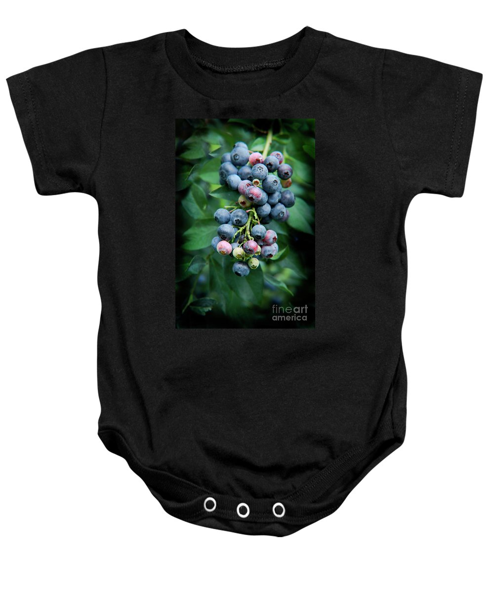 Blueberry Baby Onesie featuring the photograph Blueberry Cluster by Kim Henderson