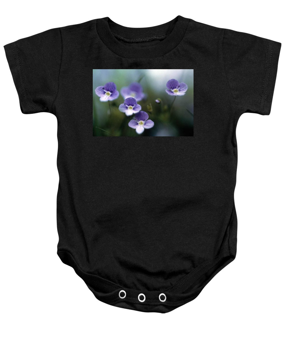 Bluettes Baby Onesie featuring the photograph Bluettes by Laurie Paci