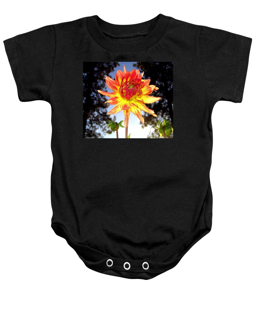 Dahlia Baby Onesie featuring the photograph Bold And Beautiful by Will Borden