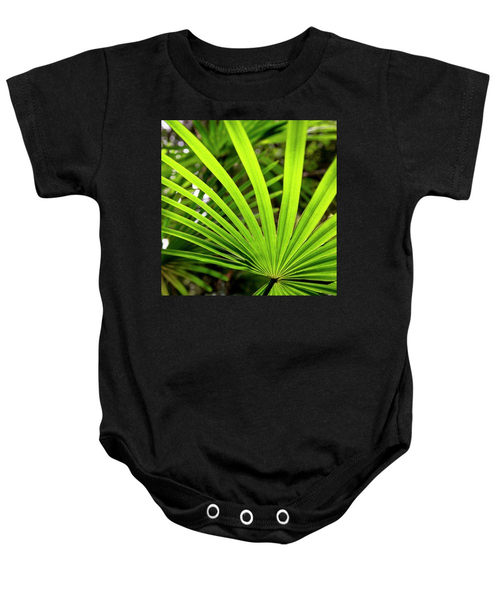 Australia Baby Onesie featuring the photograph Bold Fronds 0 by Stuart Mackenzie