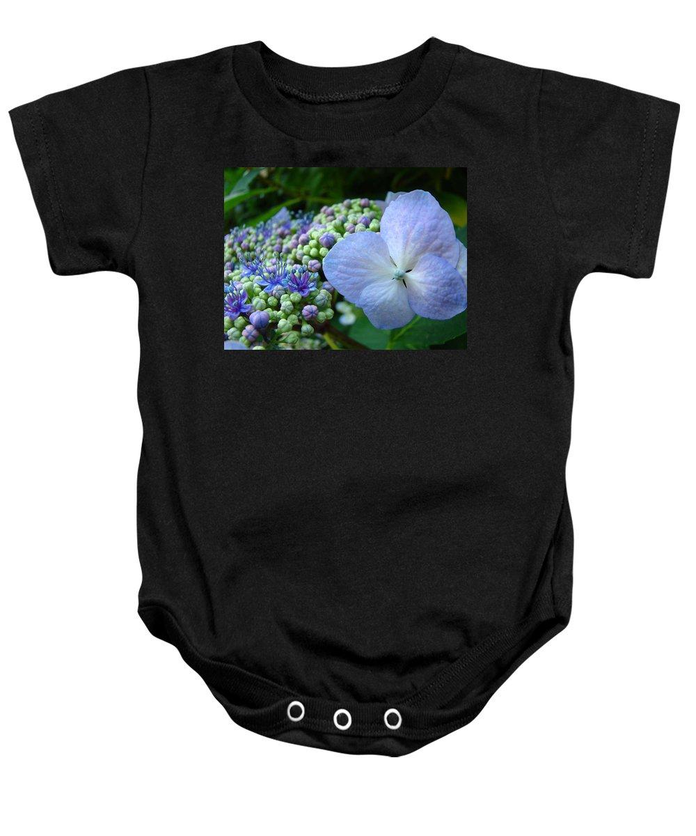 Hydrangea Baby Onesie featuring the photograph Botanical Garden Blue Hydrangea Flowers Baslee Troutman by Baslee Troutman