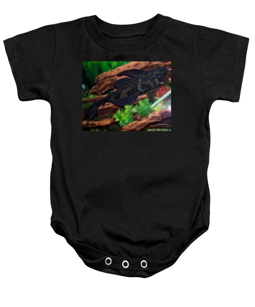 Pet Baby Onesie featuring the photograph Bozo by Betty Northcutt