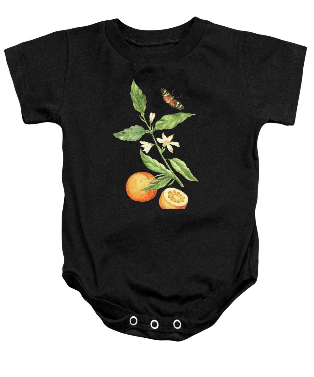 Branch Baby Onesies