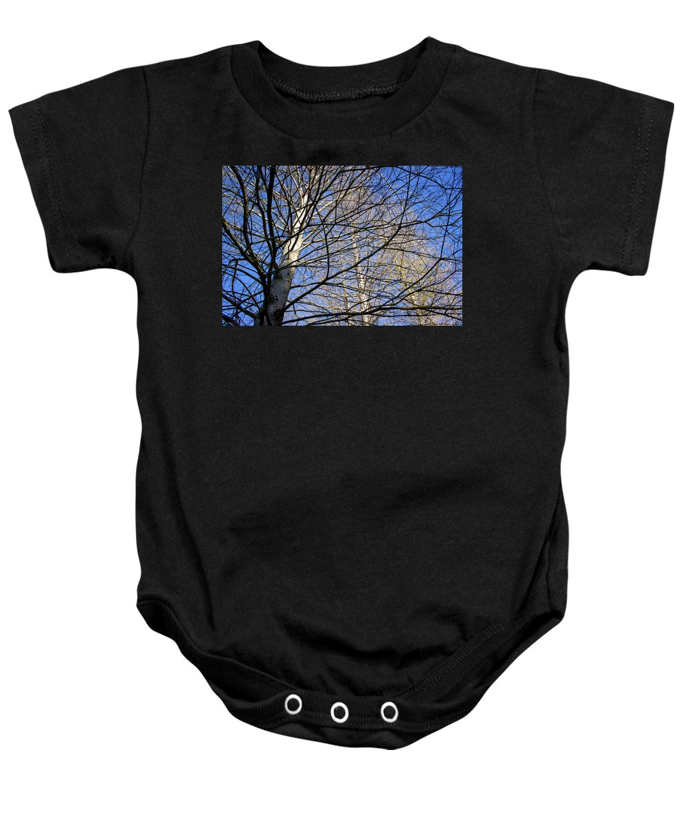 Florida Landscape Photography Baby Onesie featuring the photograph Branching Out by William Haas