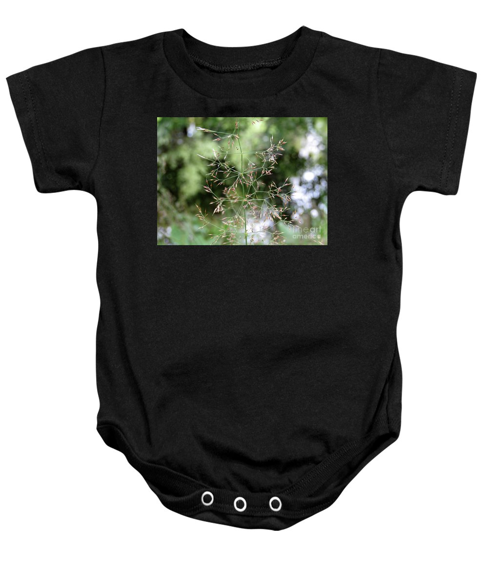 Grass Baby Onesie featuring the photograph Breezy Summer by Kim Tran