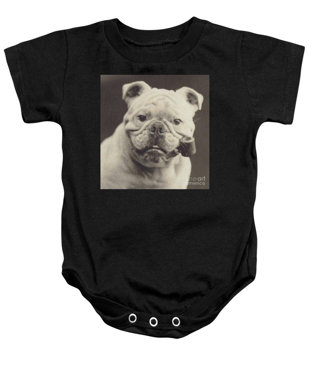 Breed Of Dog Baby Onesies