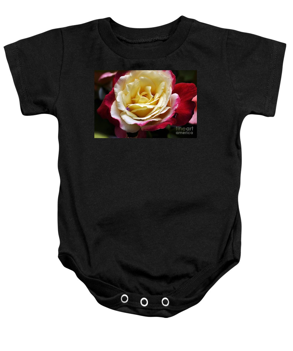 Clay Baby Onesie featuring the photograph Burst Of Rose by Clayton Bruster