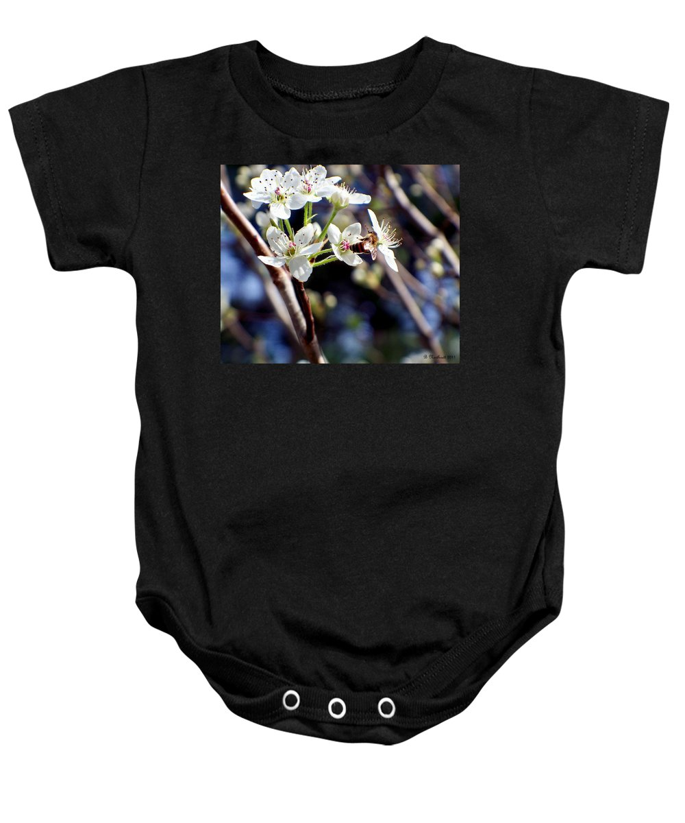 Pear Baby Onesie featuring the photograph Busy Bee by Betty Northcutt