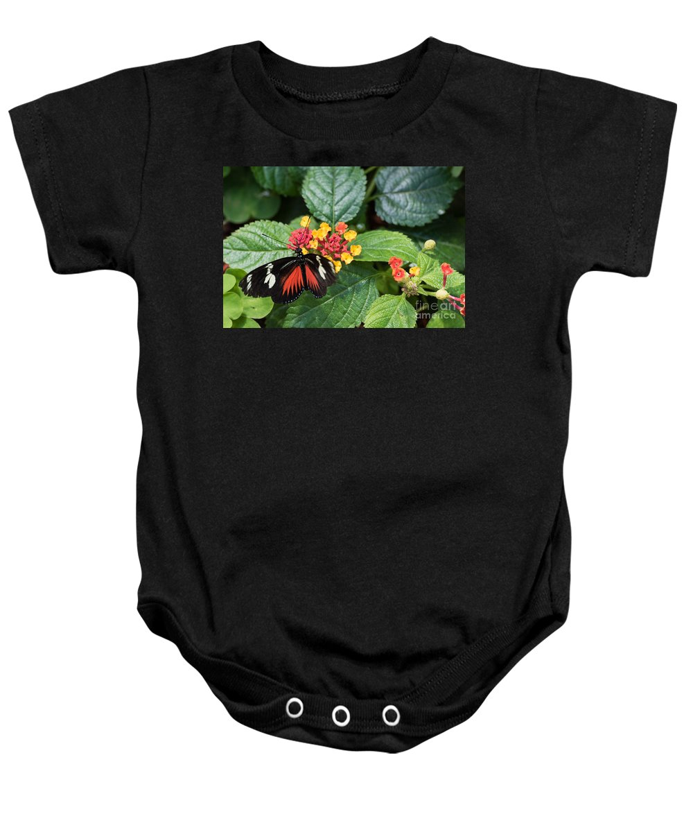 Butterfly Baby Onesie featuring the photograph Butterfly 2 by Wesley Farnsworth
