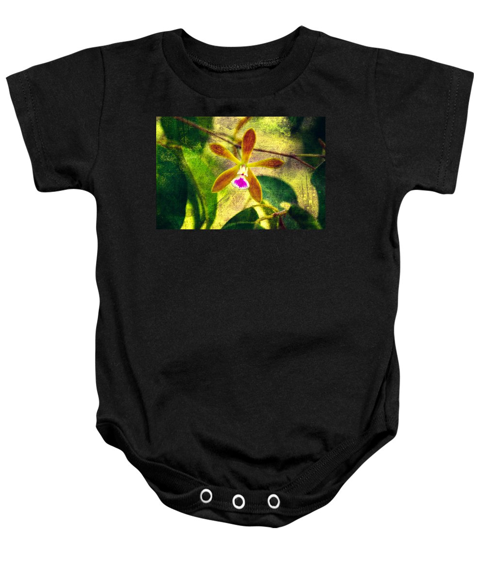 Orchid Baby Onesie featuring the photograph Butterfly Orchid - Encyclia Tampensis by Rich Leighton