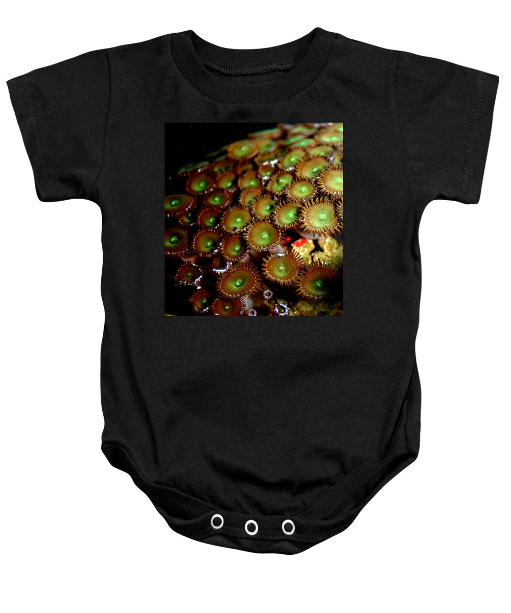 Underwater Baby Onesie featuring the photograph Button Polyps by Anthony Jones