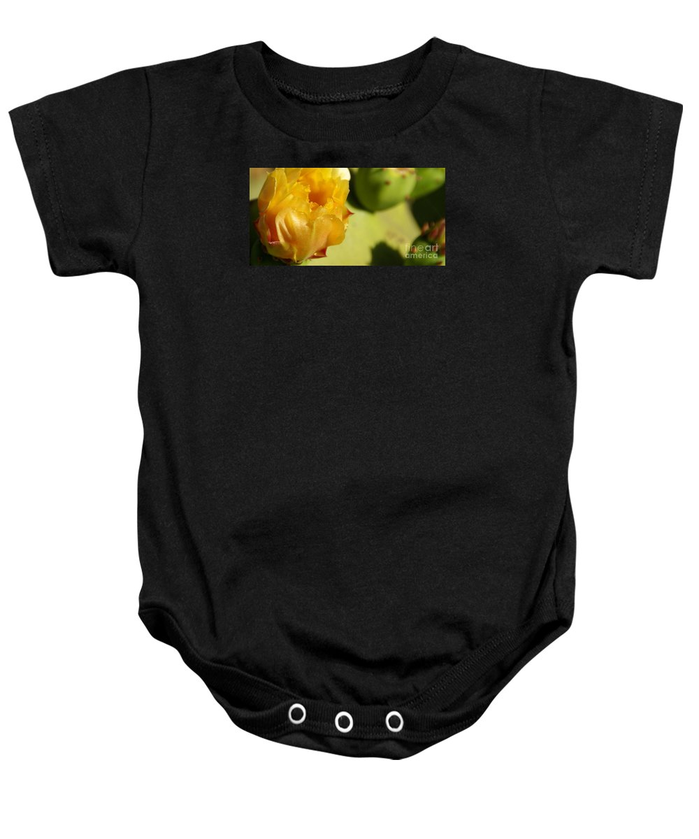 Cactus Baby Onesie featuring the photograph Cactus Flower by Linda Shafer