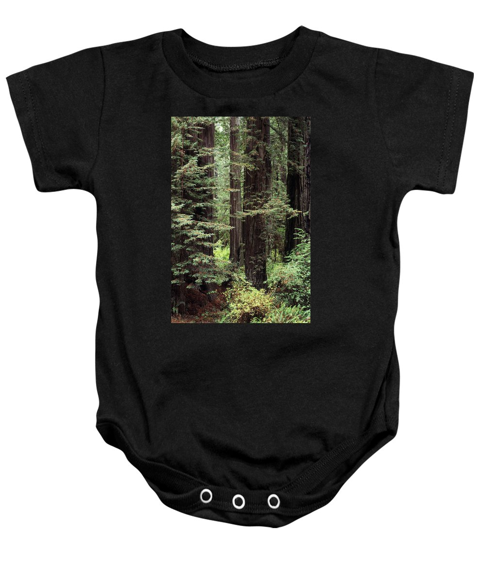 Ancient Baby Onesie featuring the photograph California Redwoods by Greg Vaughn - Printscapes