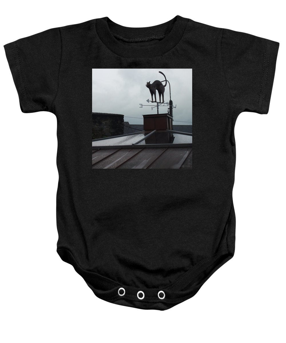 Cat Baby Onesie featuring the photograph Cat On A Cool Tin Roof by Tim Nyberg