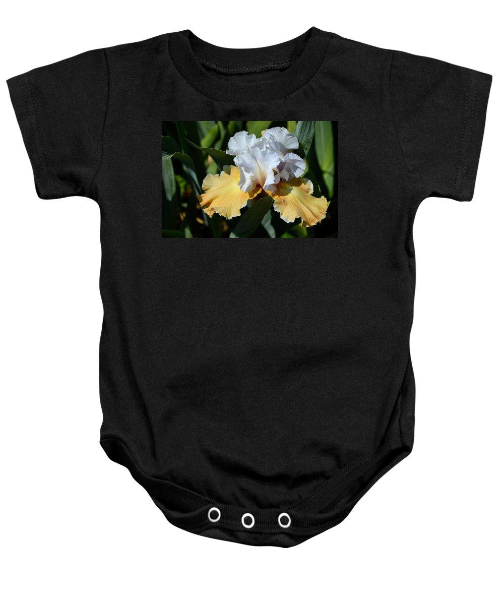 Flower Baby Onesie featuring the photograph Champagne Iris by Belinda Stucki